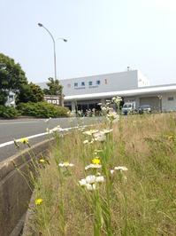 2014-05-28 10 48 31.jpg